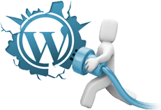 WordPress Plugin Development 1